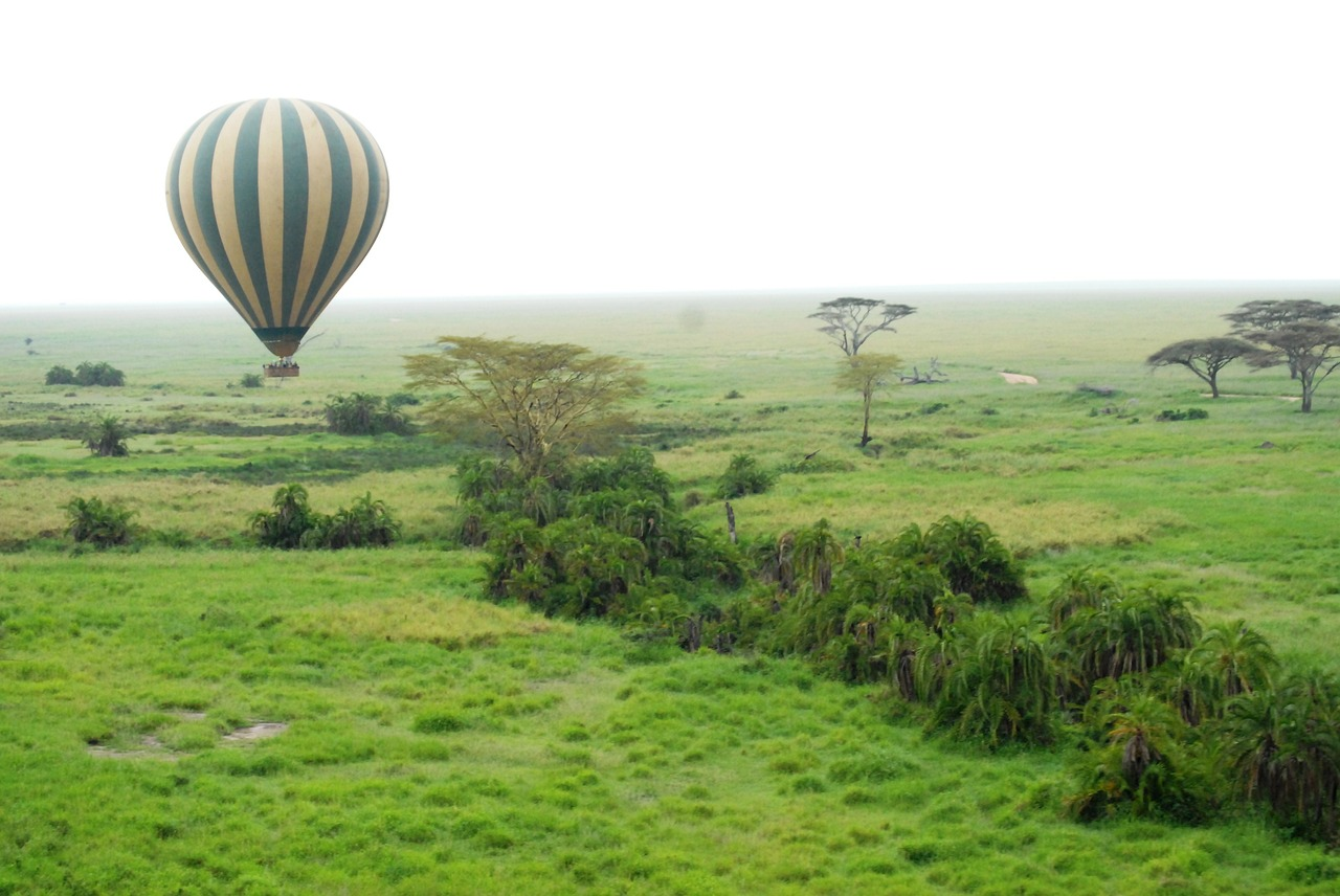 5 Types of Unique Safari Tours in Tanzania